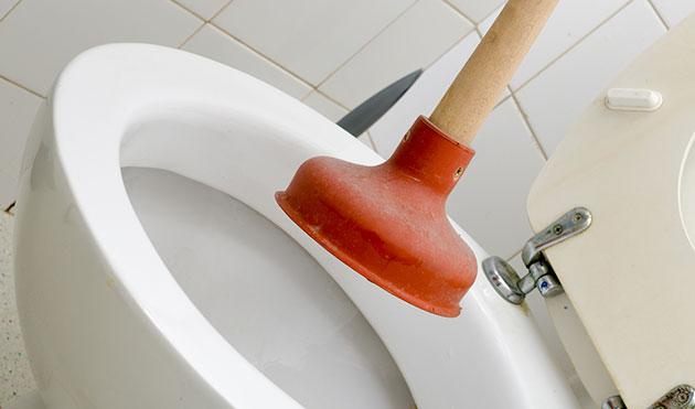 Clogged Toilet Repair Services in San Jose, CA